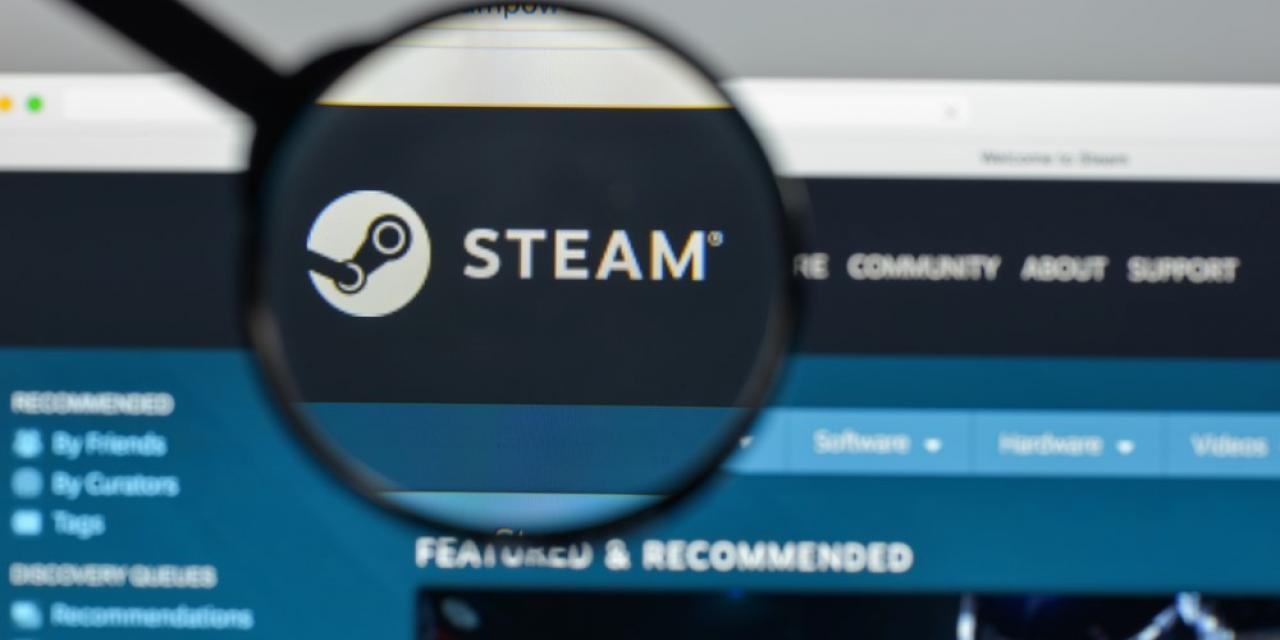 unscharfer Screenshot der Videospielplattform Steam der Firma Valve mit scharfem Lupenabschnitt