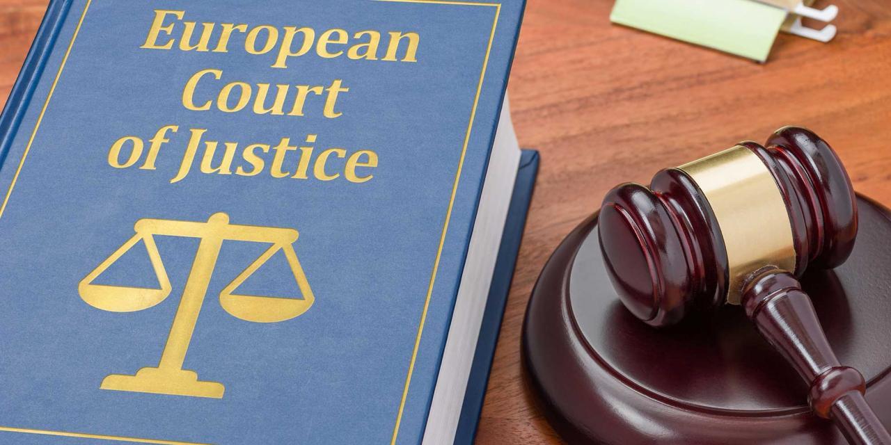 Buch mit Aufschrift European Court of Justice und Gerichtshammer